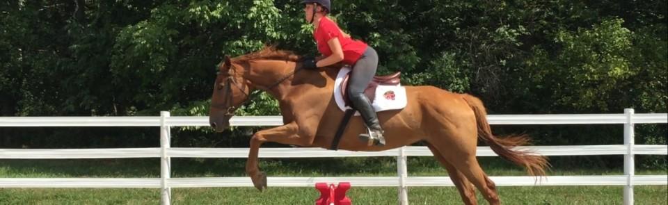 Equine-Etiquette-Slider-Page-4